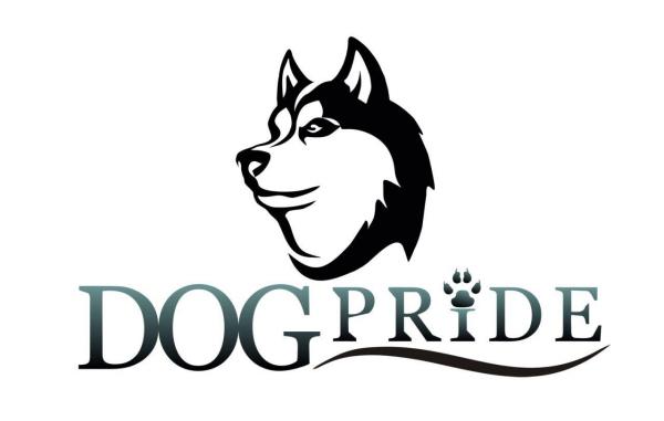 Логотип компании Кинологический тренинговый центр DogPride