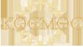 Логотип компании Космос