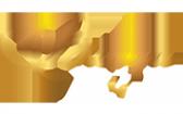 Логотип компании Влади