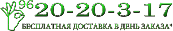 Логотип компании ТРиО96