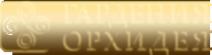 Логотип компании SalonGo.ru