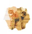 Логотип компании ЗооМодник